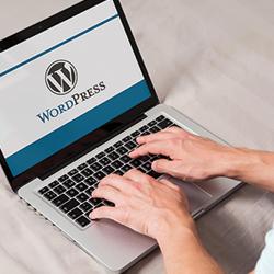 Best Web Hosting for WordPress in Knox