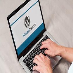 Free Web Hosting WordPress in Licking Ohio